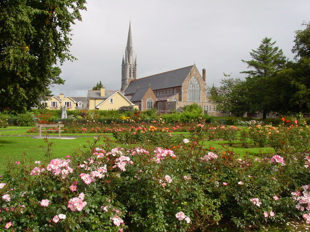 Celtic Steps Guide To Tralee This Summer - Tralee Town Park & Rose Garden